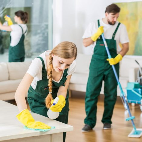 Where in Lacey, WA can you find experts in house cleaning